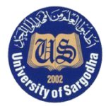 University Sargodha Roll No Slip