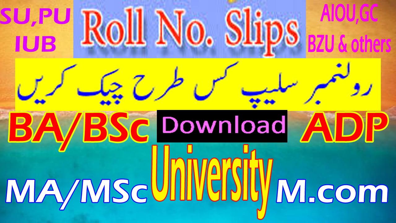 University MA MSc New Roll No Slip 2021